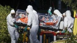 Fox prepara serie televisiva sobre el virus del ébola