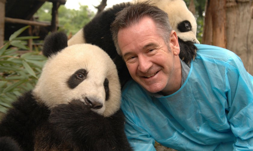 Animal Planet serie 'Pandas gigantes con Nigel Marvel'